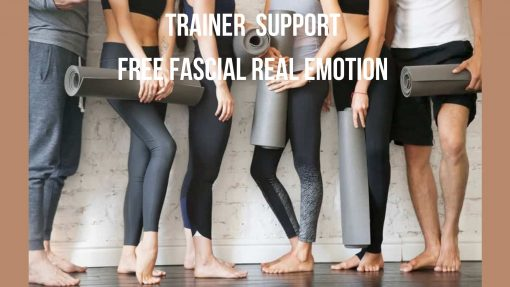 Trainer Support FREE